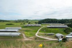 Breeder-Farms2